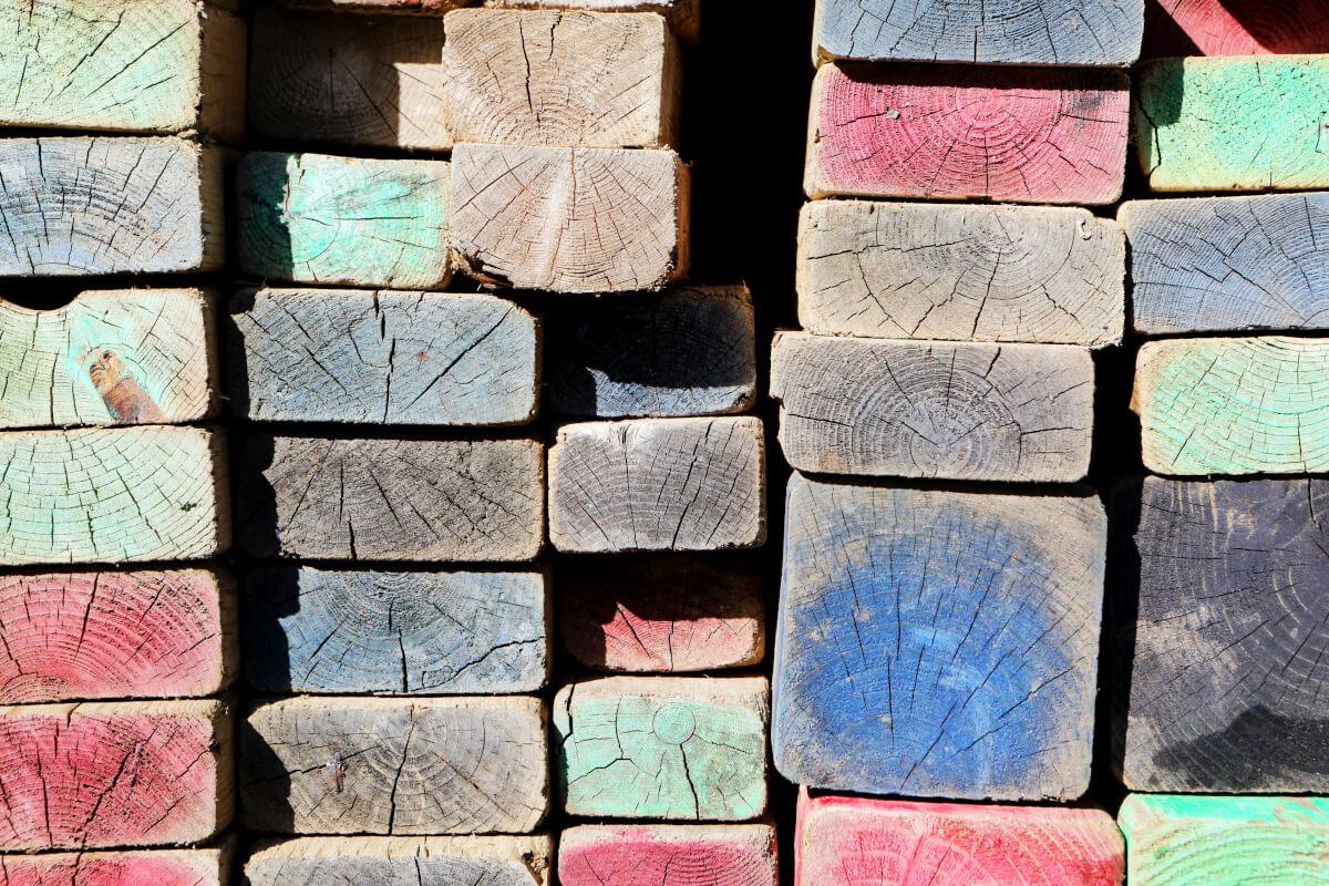 tranches de bois de toutes couleurs